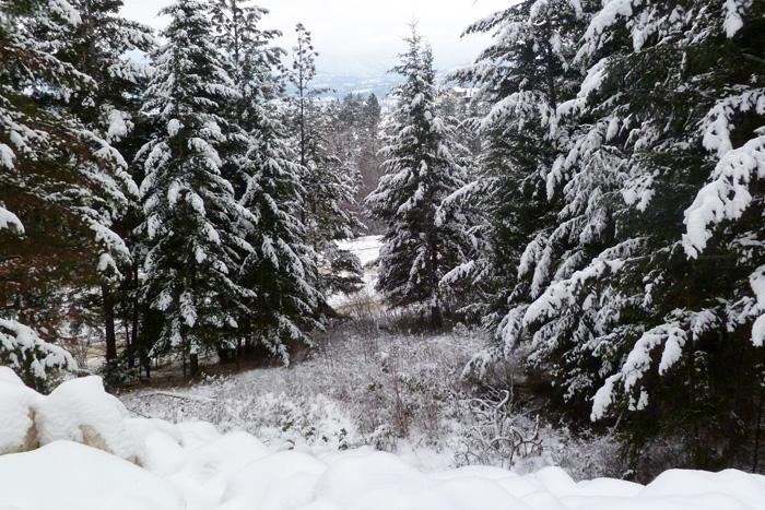ski hill?