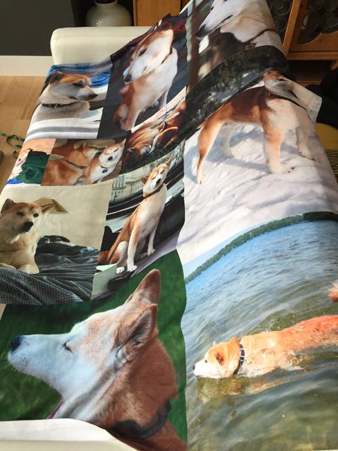 Daisuke blanket